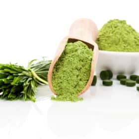 Spirulina Algen für das Immunsystem